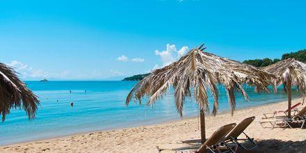 Stranden i Achladies på Skiathos, Grekland.