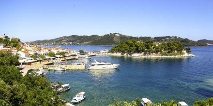 Vy över Skiathos stad, Grekland.