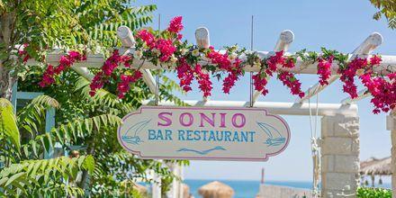 Hotell Sonio Beach i Platanias på Kreta, Grekland.