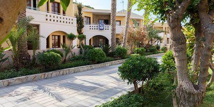 Hotell Sophia Beach på hotell Sophia Beach i Platanias på Kreta.