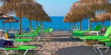Strand vid hotell Sophia Beach i Platanias på Kreta, Grekland.