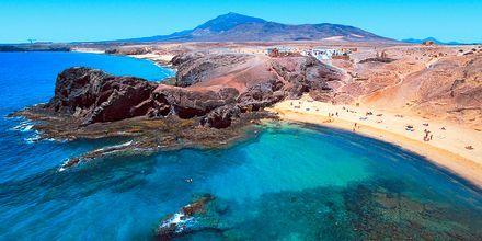 Papagayostränderna på Lanzarote är väl värda ett besök.