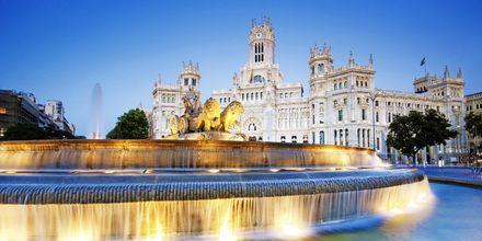 Plaza de Cibeles i Madrid.