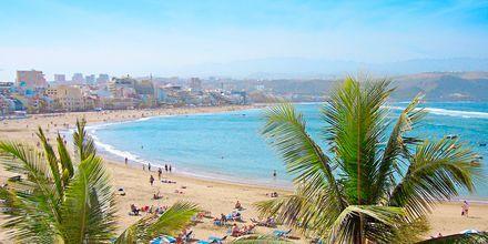 Las Canteras-stranden på Gran Canaria.