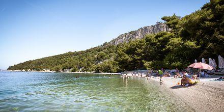 Kasjuni beach i Split i Kroatien.