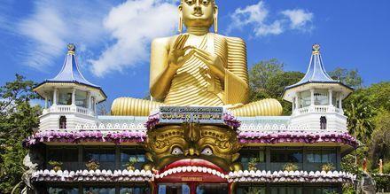 Den gyllene buddhan i Dambulla på Sri Lanka.