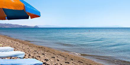 Närmaste strand vid hotell St Constantine på Kos, Grekland.