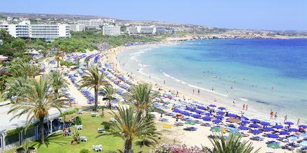 Stranden vid hotell Stamatia, Ayia Napa.