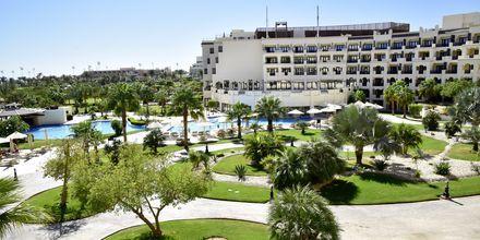 Hotell Steigenberger Al Dau Hotell Steigenberger Al Dau Beach i Hurghada, Egypten.Beach i Hurghada, Egypten.