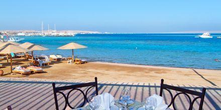 Restaurang på Steigenberger Al Dau Beach i Hurghada, Egypten.