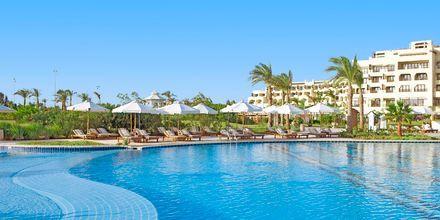 Poolområdet på hotell Steigenberger Al Dau Beach i Hurghada, Egypten.