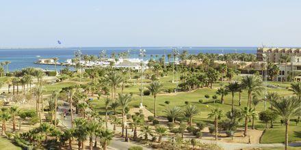 Området vid hotell Steigenberger Pure Lifestyle i Hurghada, Egypten.