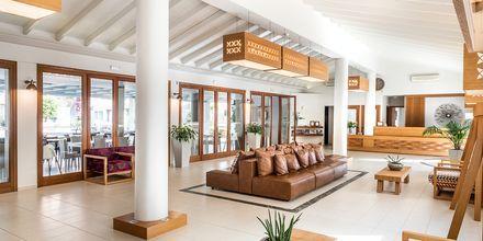 Reception och lobby på Stellina Village Resort, Kreta, Grekland.