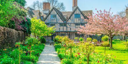 I Storbritannien kryllar det av välskötta trädgårdar, här i Stratford upon Avon.