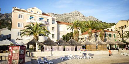 Hotell Sunce i Podgora på Makarska Rivieran, Kroatien.