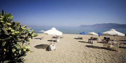 Stranden vid hotell Sunny Bay i Kastelli, Kreta.