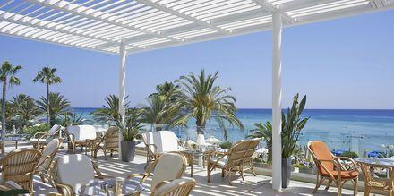 Othello Bar på Sunrise Beach i Fig Tree Bay, Cypern.