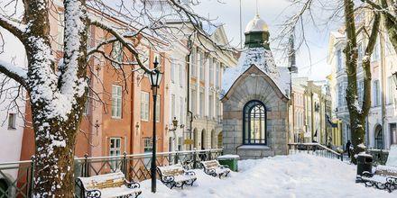 Tallinn är ett urmysigt resmål även på vintern.