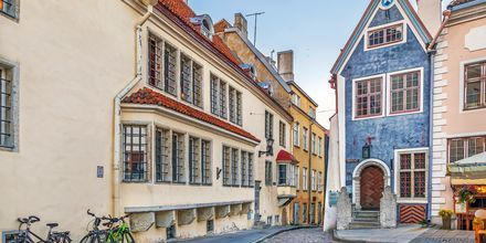 Vackra hus i Tallinns gamla stan.