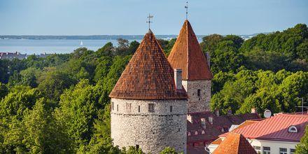 Medeltida torn i Tallinn, Estland.