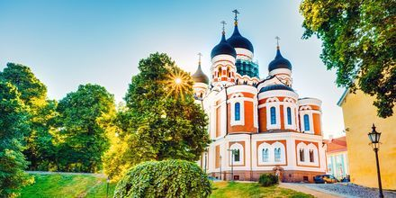 Alexander Nevskij-katedralen på Domberget i Tallinn, Estland.