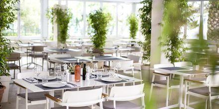 Restaurang på hotell Tamaris i Tucepi på Makarska rivieran.