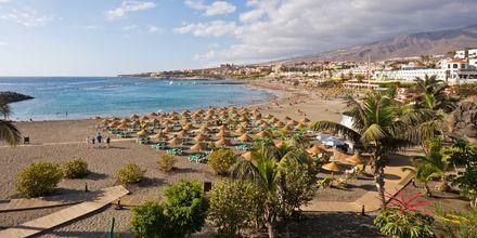 Sköna stranddagar på Teneriffa, Kanarieöarna.