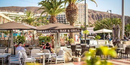 Slå dig ner för lunch i solskenet i Los Cristianos på Teneriffa.