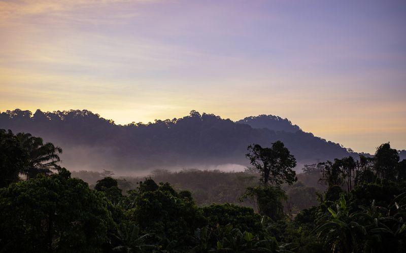 Thalang ligger i Phukets djungeln och hit kommer folk främst för att träna.