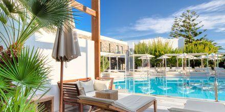 Dubbelrum med uteplats med delad pool på The Island på Kreta, Grekland.