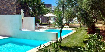 Dubbelrum med uteplats med poolaccess på The Island på Kreta, Grekland.