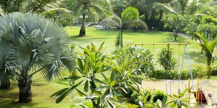 Trädgård på The O Hotel Goa, Indien.