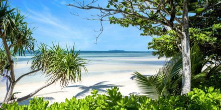 Strand vid The Passage Samui Villas & Resort, Thailand.