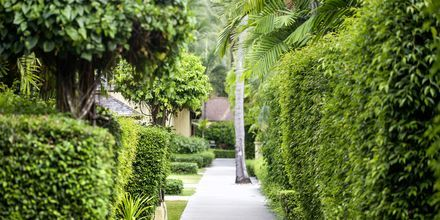 The Passage Samui Villas & Resort, Thailand.