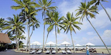 Pool på hotell The Surf i Bentota, Sri Lanka.