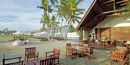 Restaurang Fruits de Mar på hotell The Surf i Bentota, Sri Lanka