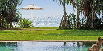 Poolen på hotell The Temple Tree i Bentota på Sri Lanka.