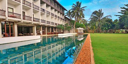Hotell The Temple Tree i Bentota på Sri Lanka.