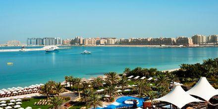 Poolområde och strand på hotell The Westin Dubai Mina Seyahi i Dubai.