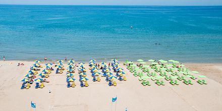 Stranden närmast hotell Theo i Rethymnon, Kreta.