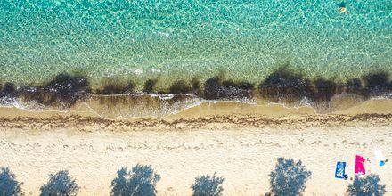Stranden i Tigaki på Kos, Grekland.