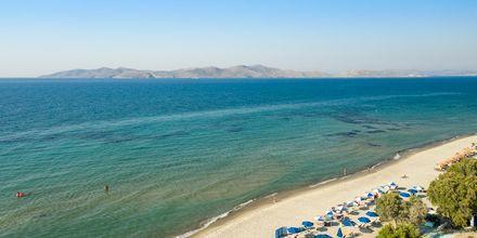 Strand i Marmari på Kos, Grekland.