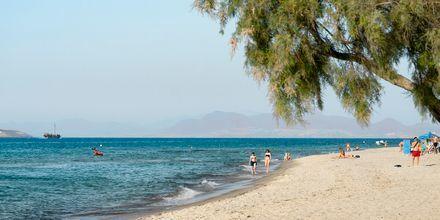 Stranden i Marmari på Kos, Grekland.