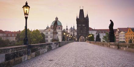 Karlsbron i Prag.