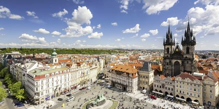 Torget i gamla stan i Prag.