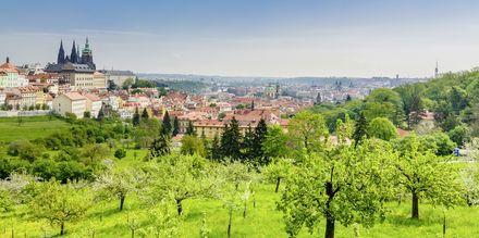 Vy över Prag, Tjeckien.