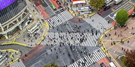 Korsningen vid Shinjuku tunnelbanestation är känd som den mest trafikerade i hela världen.