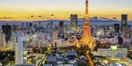 Tokyoområdet är världens mest folkrikaste storstad.