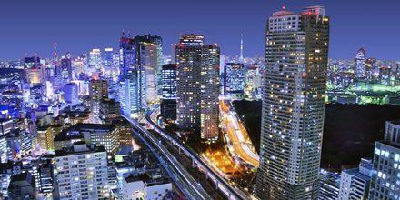 I Tokyo blandas skyskrapor med hundraåriga japanska traditioner.