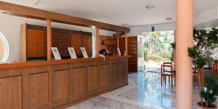 Reception på hotell Triton i Agii Apostoli, Kreta.